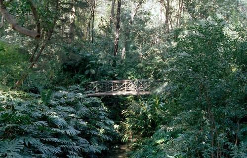 Los cinco jardines botánicos más bonitos de España