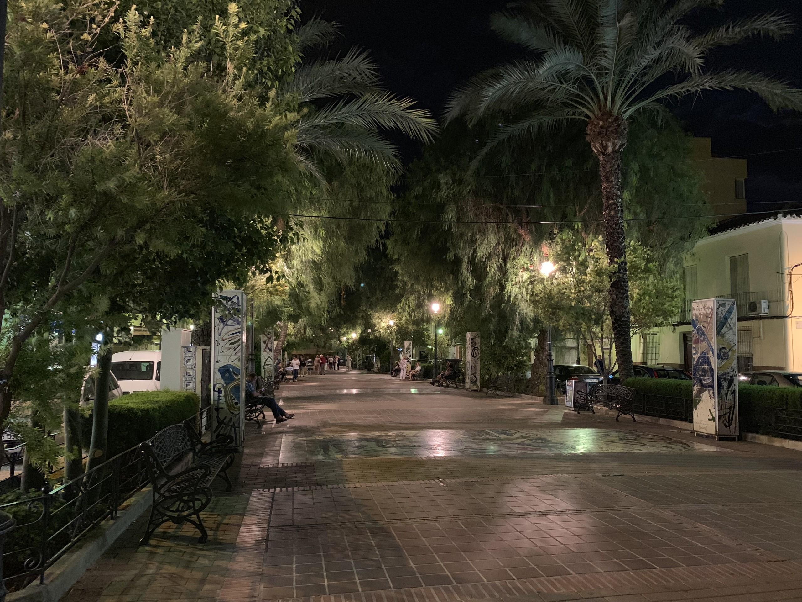 Foto de iPhone XS Max de noche (15/17)