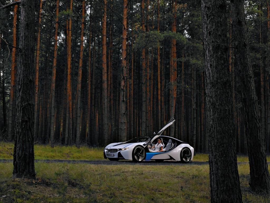 Foto de BMW Vision EfficientDynamics 2009 (71/92)