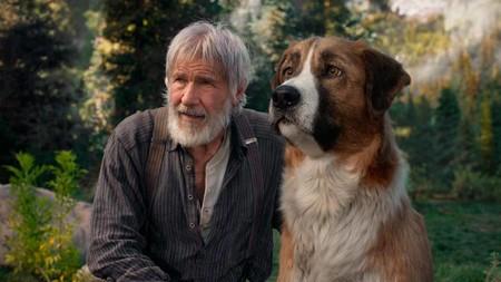 No es el abuelito de Heidi, es Harrison Ford: cumple 78 años y empieza a parecer un hallazgo arqueológico de Indiana Jones.