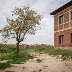 Foto 14 de 20 de la galería af-35-mm-f2-8-fe en Xataka Foto