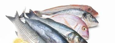 Los pescados con más proteínas