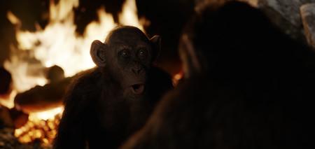 Charlton Heston nos avisó: el tráiler final de 'La guerra del planeta de los simios' adelanta el apocalipsis