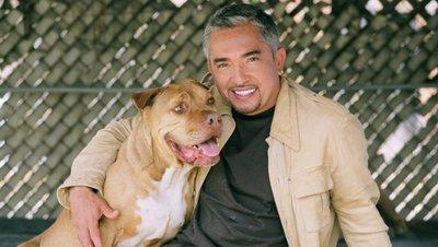 'El encantador de perros' y sus fundamentos científicos