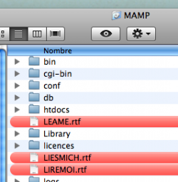 Busca archivos etiquetados con Spotlight