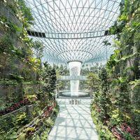 Jewel Changi ¿Es un aeropuerto, o es un increíble jardín tropical?