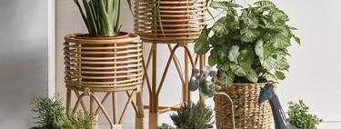 Las macetas más naturales de Ikea y El Corte Inglés y como hacer tus propias macetas para esquejes y semillas