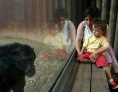 Entrevista sobre el sueño infantil: radio familialibre