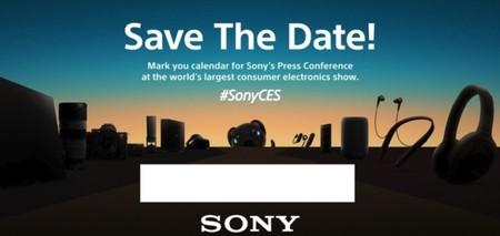 Sony En El Ces 700x331