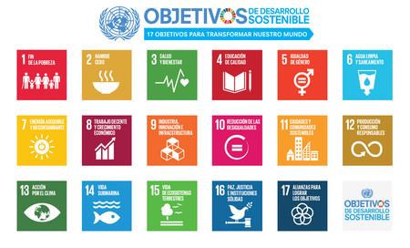 Objetivos Unesco