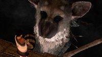 'The Last Guardian': surgen rumores de cancelación y Sony los niega (actualizado)