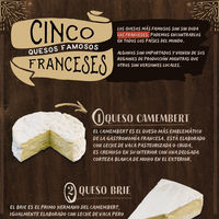 Cinco famosos quesos franceses
