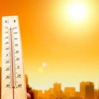 Millones de personas serán afectadas por el estrés por calor