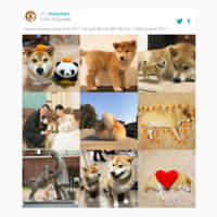 Cómo compartir tus mejores fotos del 2017 en Instagram