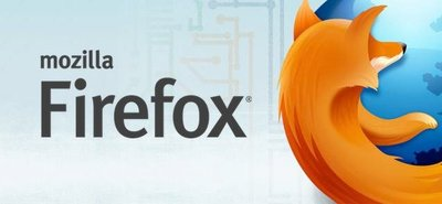 Cómo eliminar el certificado comprometido de Google en Firefox manualmente