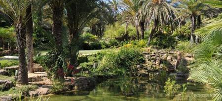 oorganiza y decora tu jardin