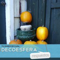 ¿Vaciáis calabazas para decorar en Halloween? La pregunta de la semana