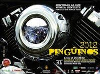 La concentración invernal Pinguinos 2012 en peligro por falta de presupuesto