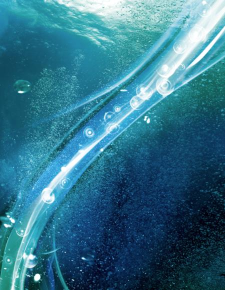 plancton.png
