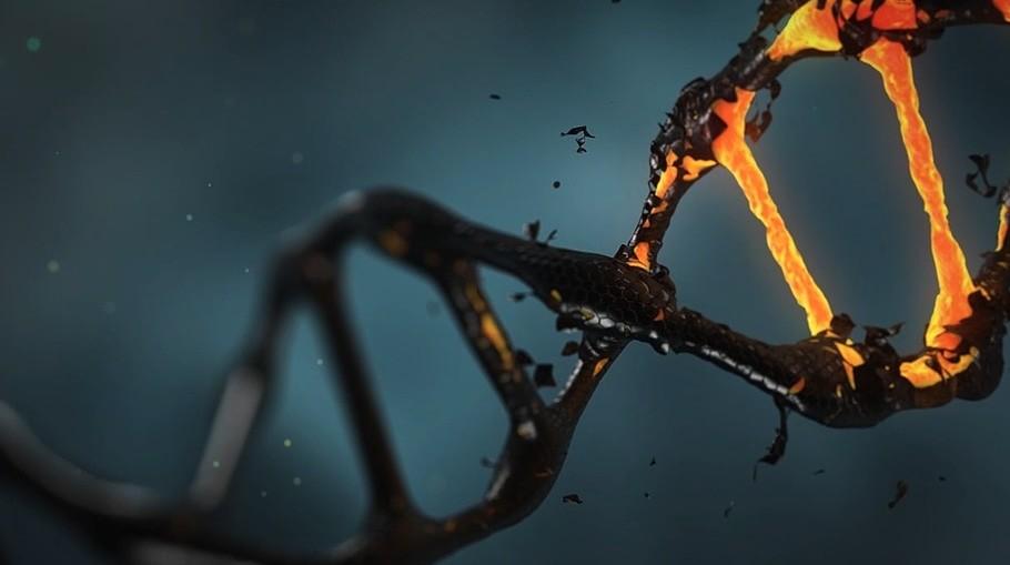 Corregir el 89% de las 75.000 mutaciones asociadas a enfermedades congénitas parece, de repente, posible: de este modo es 'prime editing'