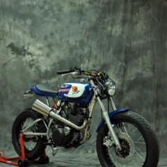 Foto 15 de 34 de la galería xtr-pepo-speedy-sr-250-1985 en Motorpasion Moto