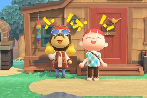 Cómo viajar y qué hacer en Cayo Fauno en Animal Crossing: New Horizons