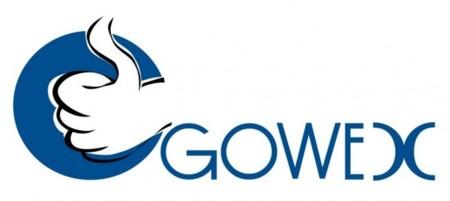 Gowex logo