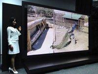 Panasonic y NHK anuncian pantalla de 145 pulgadas y resolución de 8K