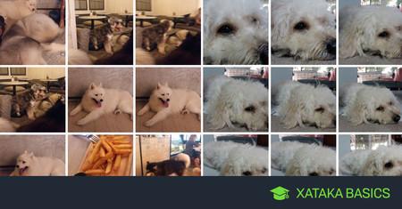 Como hacer una copia de seguridad de tus fotos en Android