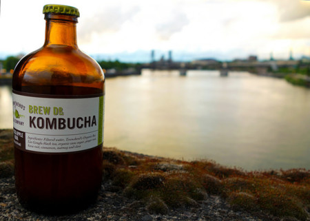 ¿Has tomado kombucha?