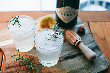 Gin Tonic invernal