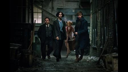 Todo listo para 'Animales fantásticos 3': Warner confirma fecha, reparto y director de la nueva entrega del universo Harry Potter