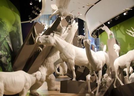 biomuseo-frank-gehry_dezeen_784_7.jpg