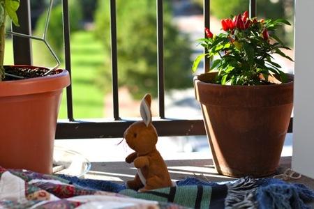 Jugar en la terraza