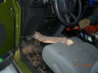 Hay gente con mucha suerte 13: a punto de perder las canicas mientras conducía su Jeep Wrangler
