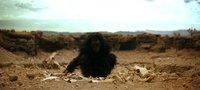 Stanley Kubrick | '2001: Una odisea del espacio'