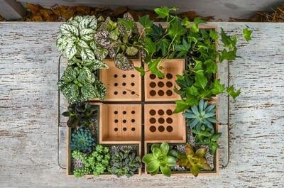Una buena idea: plantas integradas en los accesorios para el escritorio