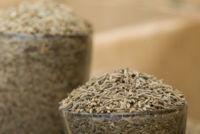 El comino: una especia que enriquece nuestros platos