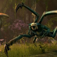 Foto 5 de 14 de la galería the-elder-scrolls-online-22-10-2012 en Vidaextra