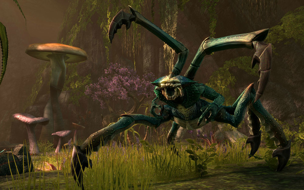 Foto de The Elder Scrolls Online - 22/10/2012 (5/14)