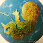 18 artistas se unen para recaudar fondos a través del NFT en beneficio de distintas ONG en el Día Mundial del Medio Ambiente