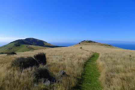 Un paseo por la Península de Banks. Descubriendo el pasado francés de Akaroa, en Nueva Zelanda