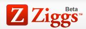 Ziggs, organizador profesional de contactos