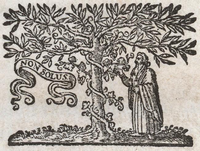 Nikolaes Heinsius The Elder Poemata Elzevier 1653 Druckermarke