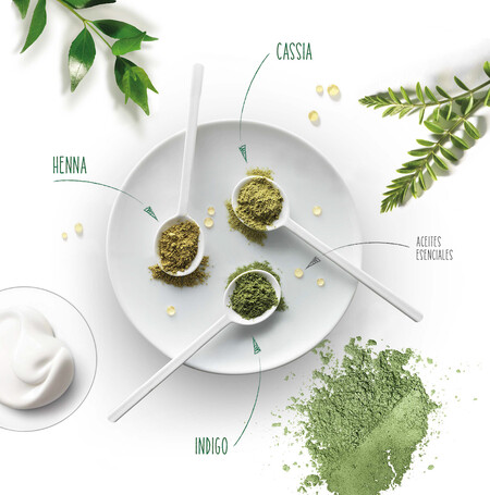 Visual Ingredientes