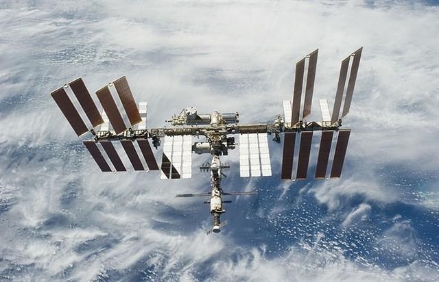 Se estudian en la Tierra bacterias que vivieron en el espacio
