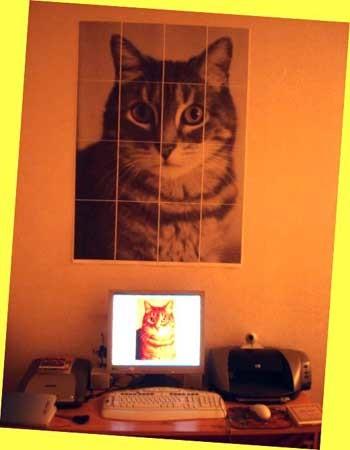 Hazte tu propio poster decorativo