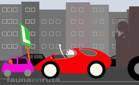 fauna en ruta: conductor novel