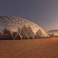 """Poner en práctica la """"agricultura marciana"""" en casa: el paso previo de los Emiratos Árabes antes de llegar a Marte"""