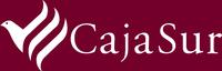 Cajasur pierde 196 millones de euros en el primer trimestre